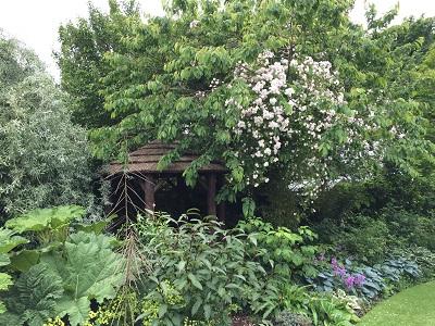 yorkshire-garden