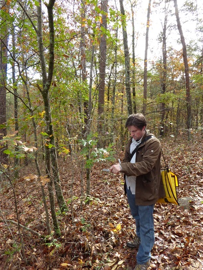 5-10-5: Matt Lobdell, Head of Collections and Curator, The Morton Arboretum